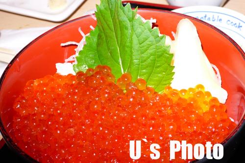 P1100575のコピー.jpg
