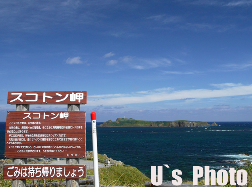 P1100951 のコピー.jpg