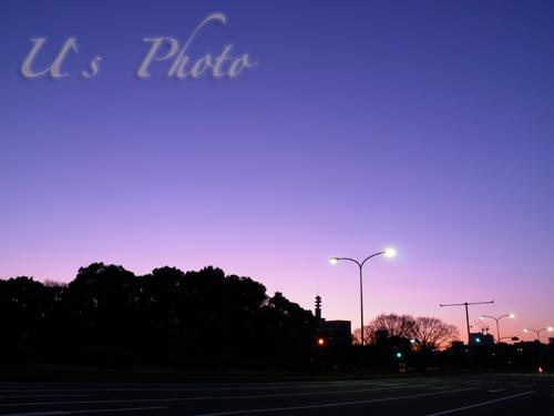 P1170185 のコピー.jpg