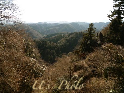 P1170560 のコピー.jpg