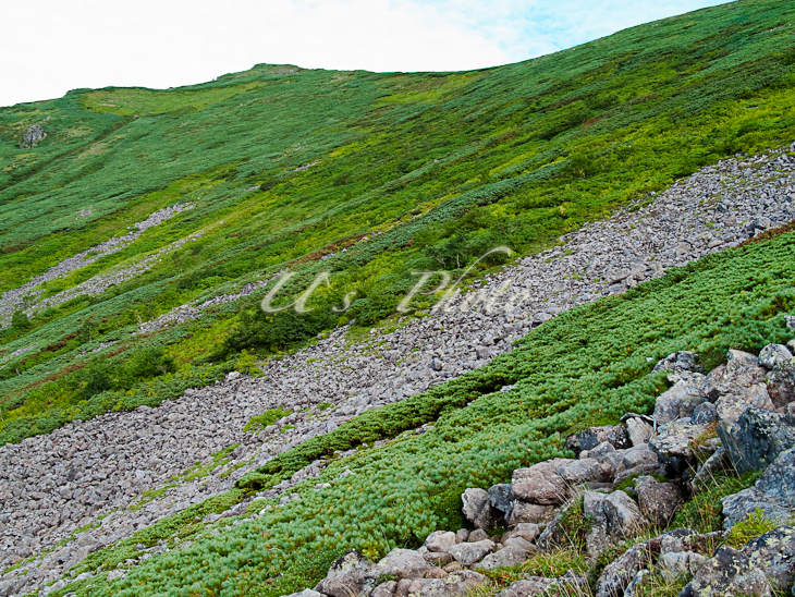 トムラウシ登山12