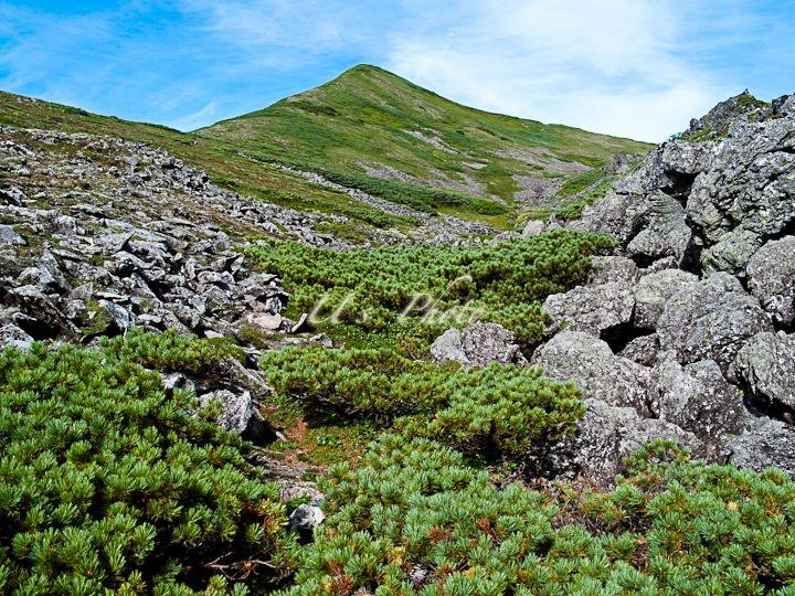 トムラウシ登山18
