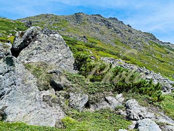 トムラウシ登山36