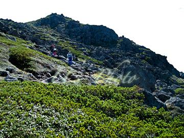 トムラウシ登山54