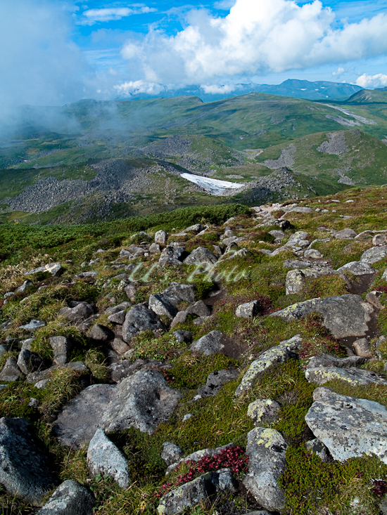 トムラウシ登山57