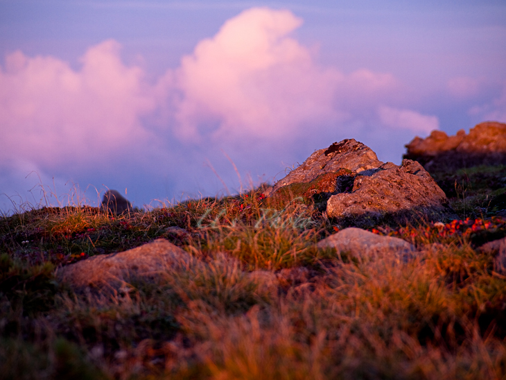 トムラウシ登山 63
