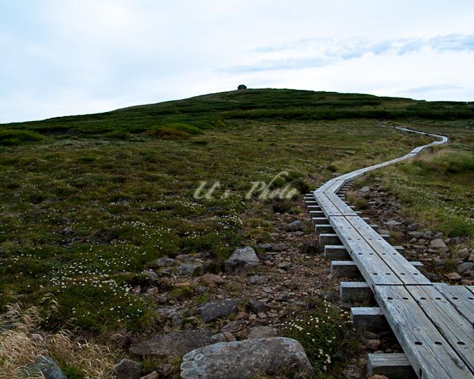 トムラウシ登山 76