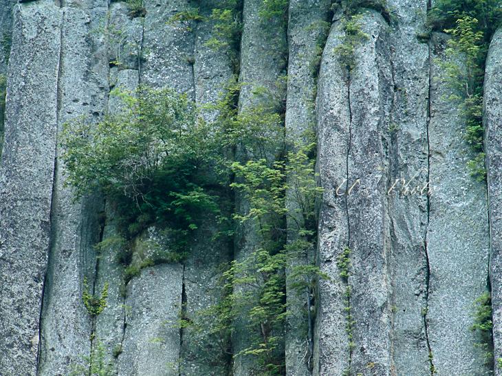 トムラウシ登山 85