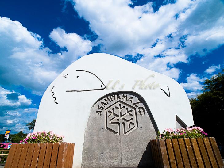 旭山動物園 1